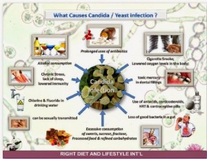 CANDIDA CAUSES