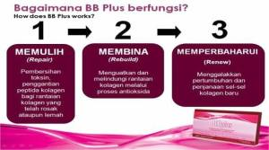 BB Plus Collagen Process Flow